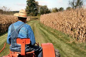 Piso salarial do trabalhador rural tem reajuste no MS