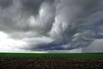 Chuva pode prejudicar produtividade em MT