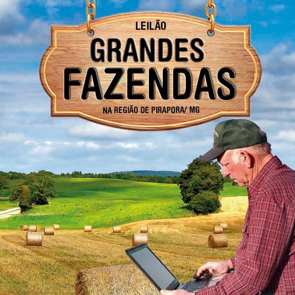 Empresa realiza leilão de grandes fazendas em MG