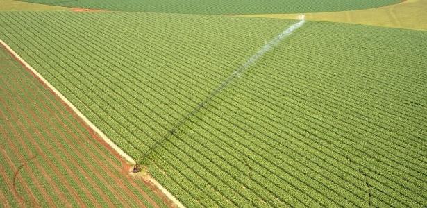 MT quer zerar desmatamento até 2020