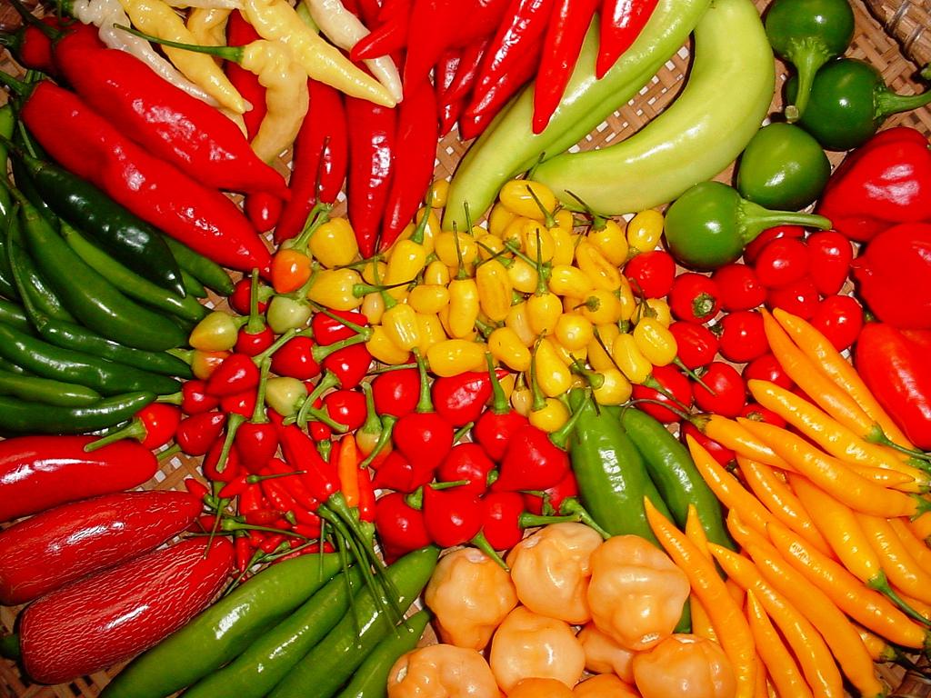 Pimenta 500mg Chá Mais 60 cápsulas-4